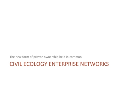 Civil Ecology Enterprise Networks