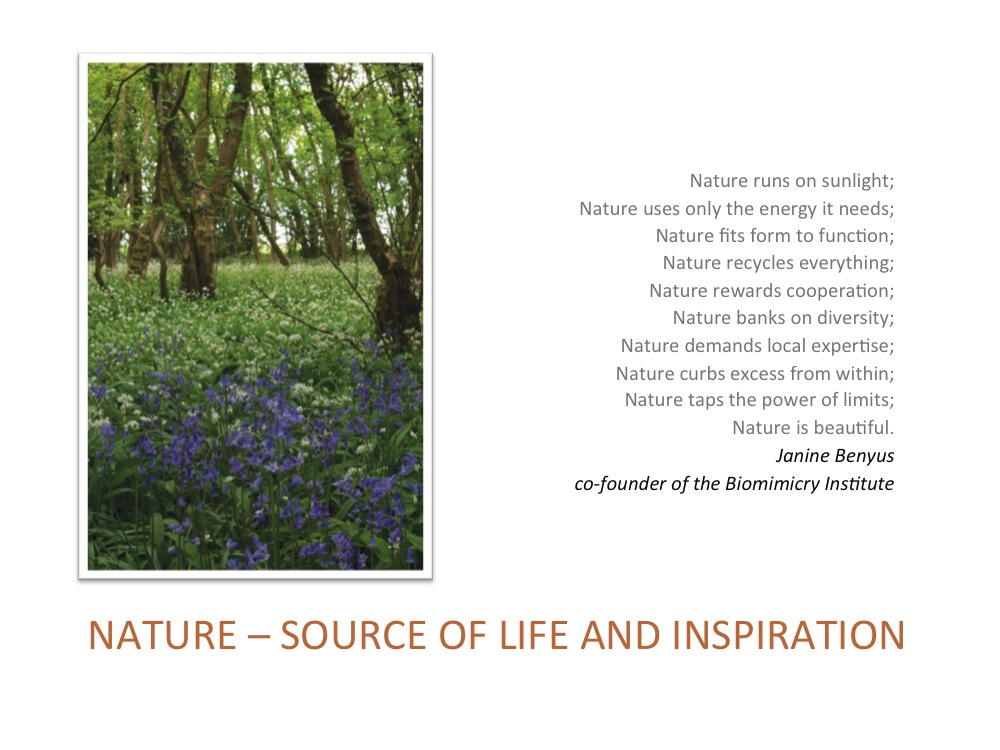 From Natural to Civil Ecology